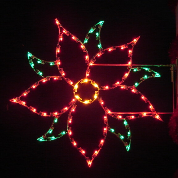 POINSETTIA Holiday Light Display