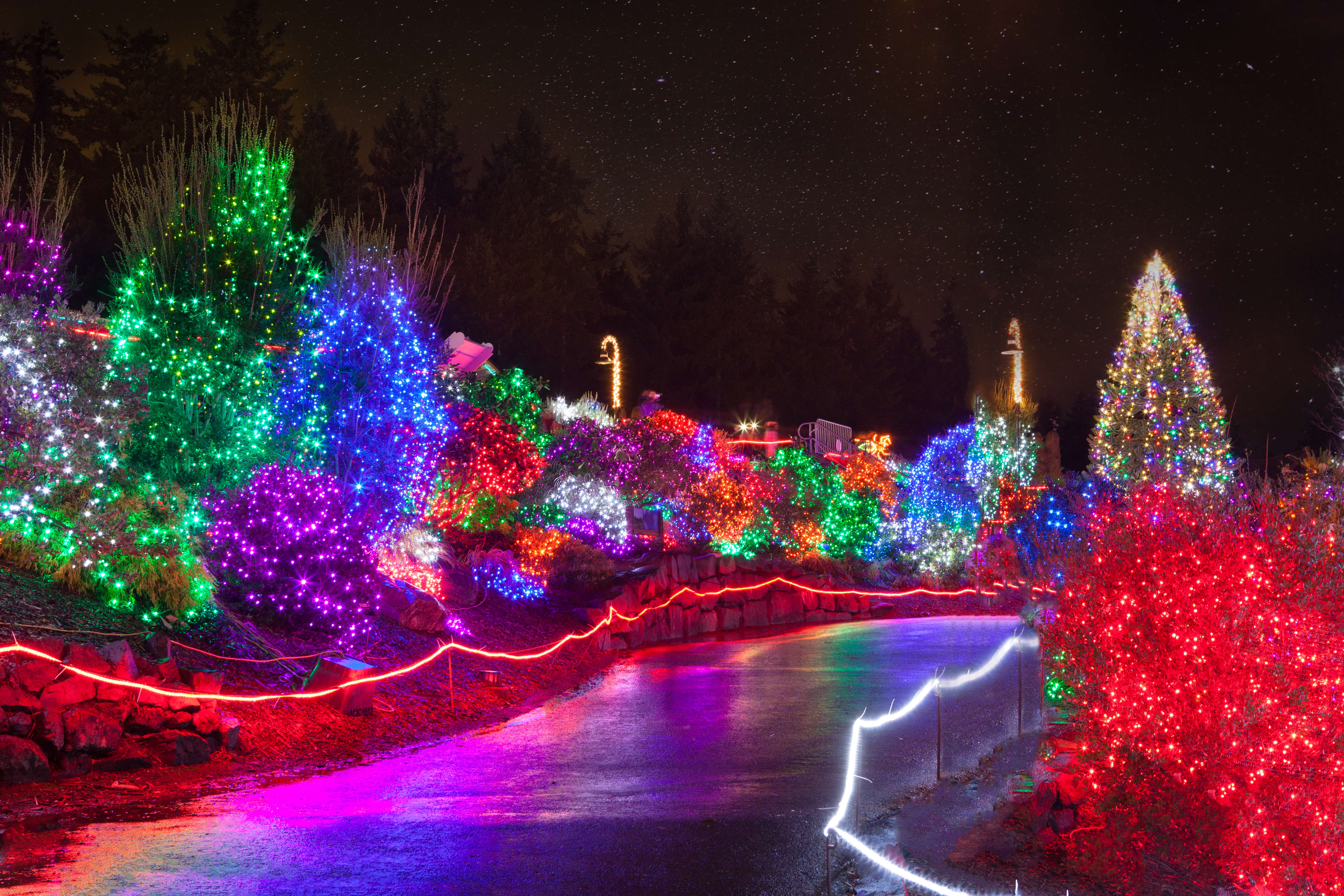 Creative Displays Commercial Christmas Lighting Whole